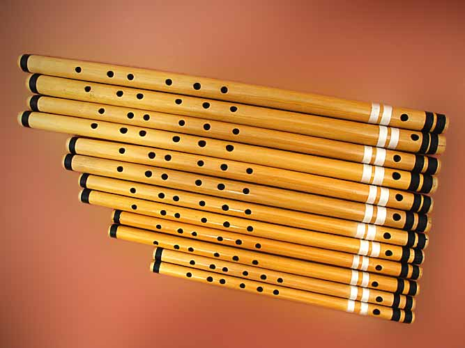 Tarang Indian Instruments: Indian wind instruments - Overview